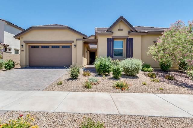 19691 E Apricot Lane, Queen Creek, AZ 85142 (MLS #6119570) :: Conway Real Estate