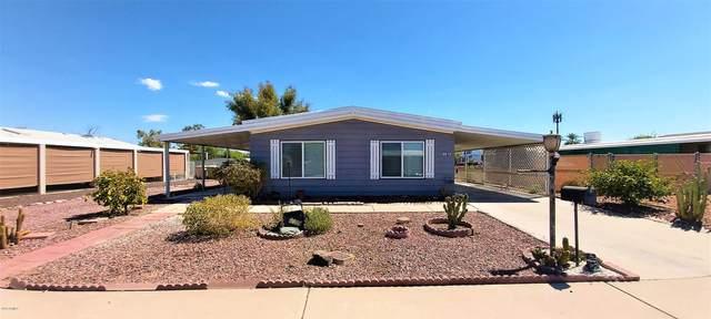 6619 W Camino San Xavier Avenue, Glendale, AZ 85308 (#6119650) :: AZ Power Team | RE/MAX Results