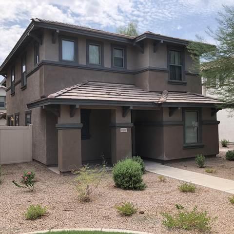 5828 E Hampton Avenue, Mesa, AZ 85206 (MLS #6119970) :: My Home Group