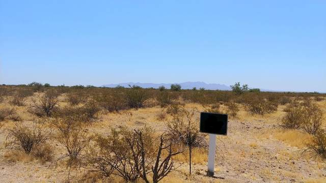 32701 W Forrest Pleasant Place, Wittmann, AZ 85361 (MLS #6120007) :: Arizona 1 Real Estate Team