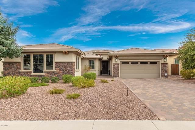 14842 W Aldea Drive N, Litchfield Park, AZ 85340 (MLS #6120246) :: The J Group Real Estate | eXp Realty
