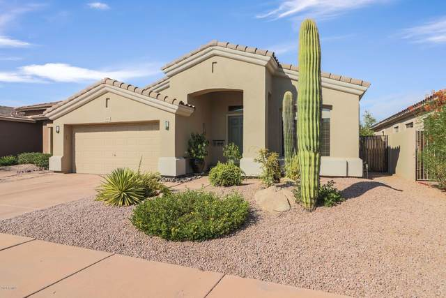 5010 E Robin Lane, Phoenix, AZ 85054 (MLS #6120425) :: The Carin Nguyen Team