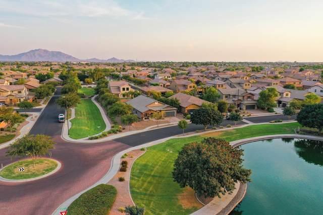 3077 E Melrose Street, Gilbert, AZ 85297 (MLS #6120502) :: neXGen Real Estate