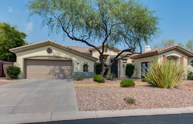 42023 N Anthem Heights Drive, Anthem, AZ 85086 (MLS #6120555) :: Arizona 1 Real Estate Team