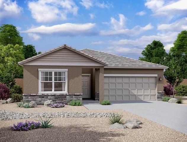 5672 E Moira Road, Florence, AZ 85132 (MLS #6120577) :: neXGen Real Estate