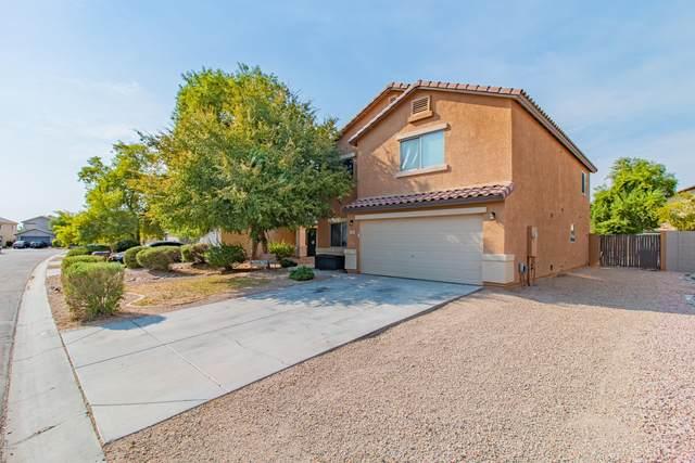 384 W Jersey Way, San Tan Valley, AZ 85143 (MLS #6120588) :: Conway Real Estate