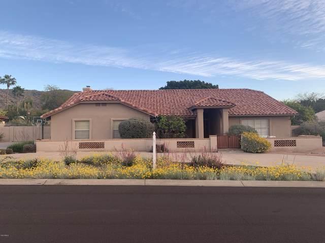 3544 E Hialea Court, Phoenix, AZ 85044 (MLS #6120640) :: Dijkstra & Co.
