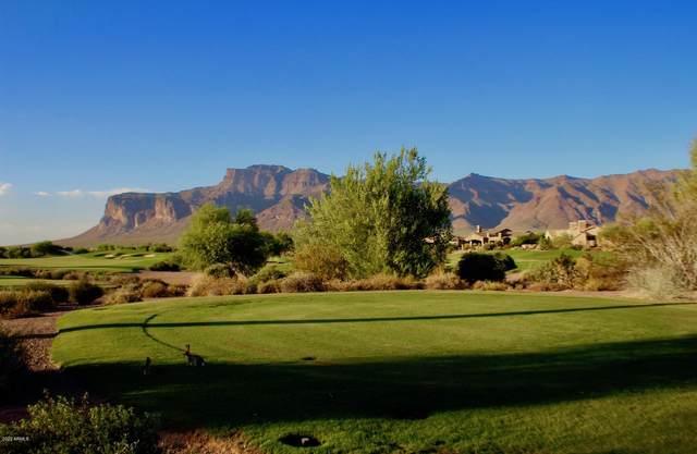 3791 S Gambel Quail Way, Gold Canyon, AZ 85118 (#6120716) :: The Josh Berkley Team