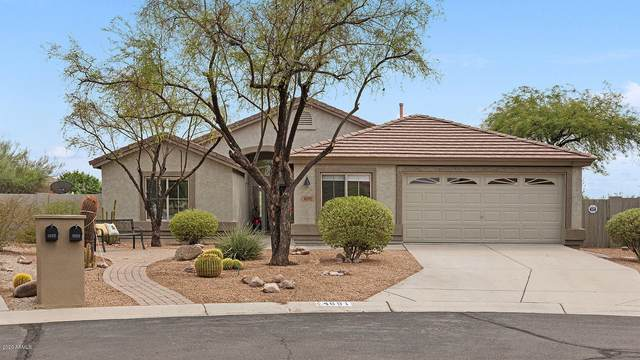 4691 S Palacio Way, Gold Canyon, AZ 85118 (MLS #6120936) :: Dijkstra & Co.