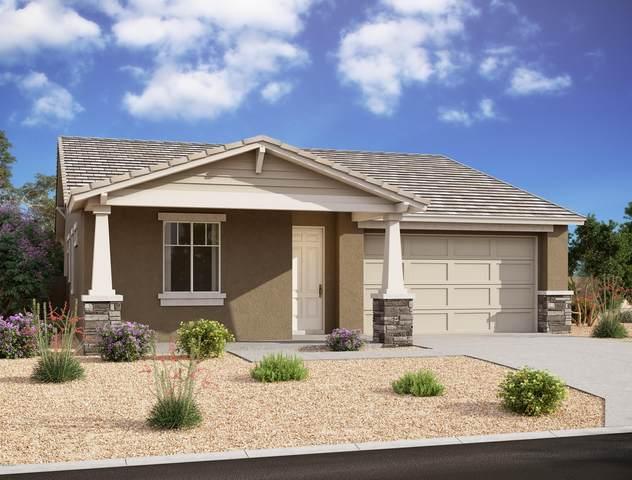 10515 S 55TH Drive, Laveen, AZ 85339 (MLS #6121269) :: Brett Tanner Home Selling Team