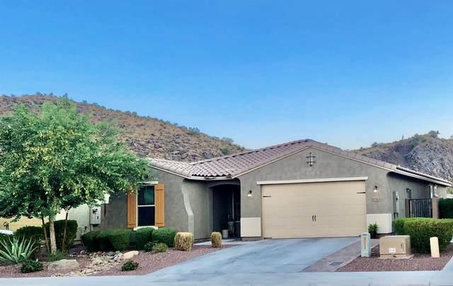 10343 W Rosewood Lane, Peoria, AZ 85383 (MLS #6121742) :: Howe Realty