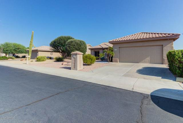15133 W Woodridge Drive, Surprise, AZ 85374 (MLS #6121751) :: TIBBS Realty