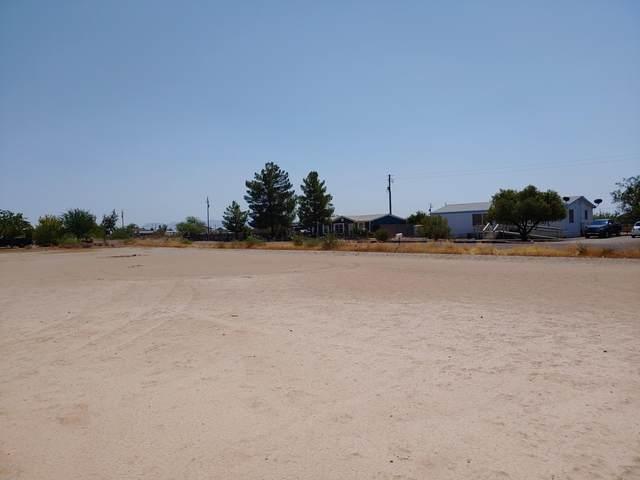 3380 W Toluca Drive, Eloy, AZ 85131 (MLS #6121966) :: Yost Realty Group at RE/MAX Casa Grande