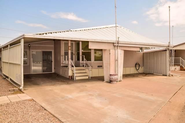 2434 E Main Street #69, Mesa, AZ 85213 (MLS #6122348) :: Conway Real Estate