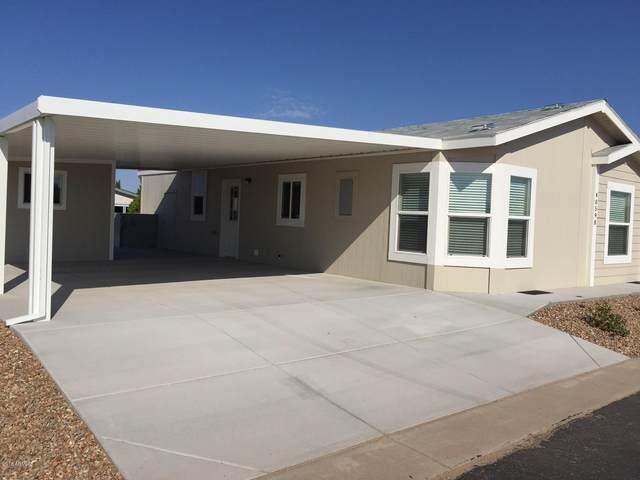 40511 N Birdie Street, San Tan Valley, AZ 85140 (MLS #6122523) :: Walters Realty Group