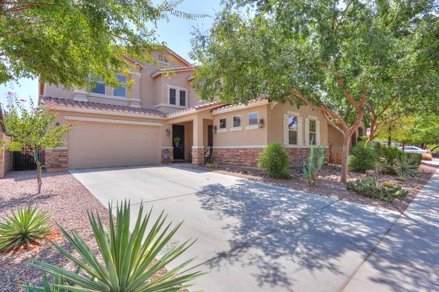 42553 W Chimayo Drive, Maricopa, AZ 85138 (MLS #6122601) :: TIBBS Realty