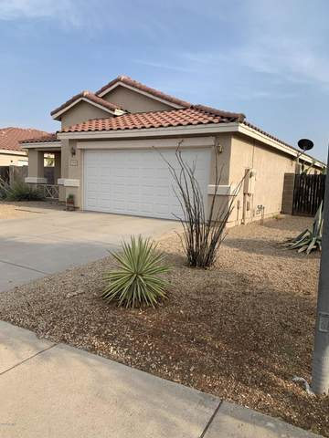 11825 W Edgemont Avenue, Avondale, AZ 85392 (MLS #6122605) :: Brett Tanner Home Selling Team