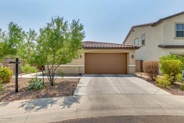 3403 W Saint Kateri Drive, Phoenix, AZ 85041 (MLS #6122694) :: Conway Real Estate