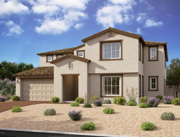 22716 E Camacho Road, Queen Creek, AZ 85142 (MLS #6122736) :: Homehelper Consultants