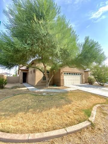 902 E Doris Street, Avondale, AZ 85323 (MLS #6122833) :: Devor Real Estate Associates