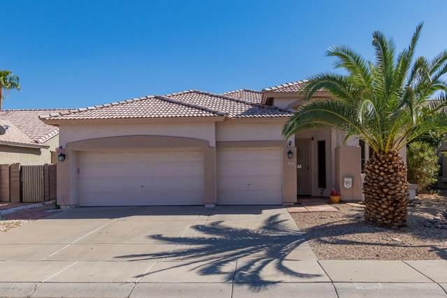 3415 W Los Gatos Drive, Phoenix, AZ 85027 (MLS #6122868) :: Nate Martinez Team