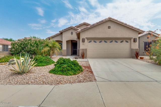 795 S 228TH Drive, Buckeye, AZ 85326 (MLS #6122934) :: Homehelper Consultants