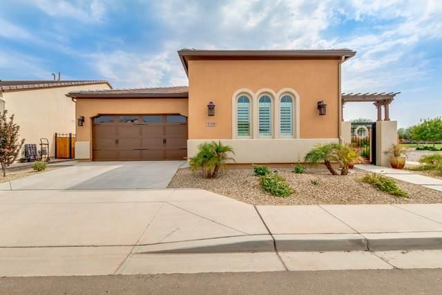 729 E Garden Basket Drive, San Tan Valley, AZ 85140 (MLS #6123332) :: Balboa Realty