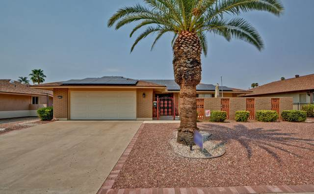 13848 N Bolivar Drive, Sun City, AZ 85351 (MLS #6123343) :: Midland Real Estate Alliance