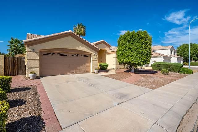 11404 W Ashland Way, Avondale, AZ 85392 (MLS #6123814) :: The C4 Group