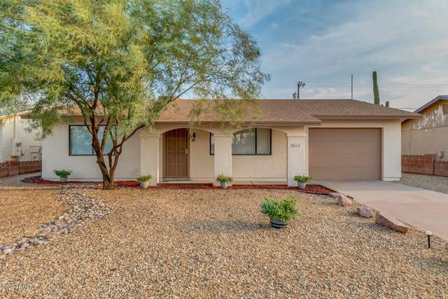 9013 W Santa Cruz Boulevard, Arizona City, AZ 85123 (MLS #6123827) :: Homehelper Consultants