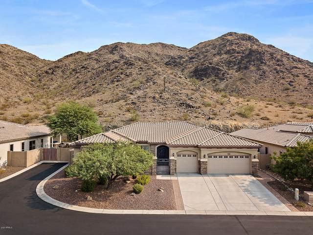 2810 W Hiddenview Drive, Phoenix, AZ 85045 (MLS #6123868) :: My Home Group