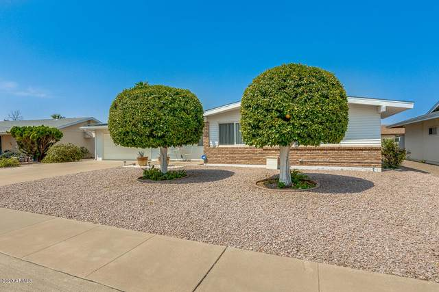 10024 W Deanne Drive, Sun City, AZ 85351 (MLS #6123955) :: TIBBS Realty