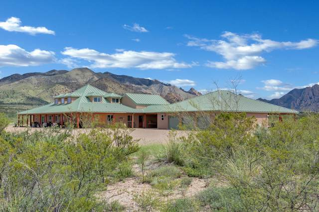 1717 N Bear Run, Saint David, AZ 85630 (MLS #6123982) :: Long Realty West Valley