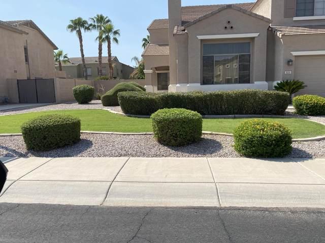 3221 E Devonshire Court, Gilbert, AZ 85297 (MLS #6124106) :: Selling AZ Homes Team
