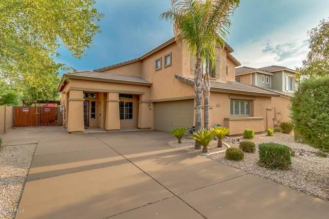 1415 E Natasha Drive, Casa Grande, AZ 85122 (MLS #6124250) :: Long Realty West Valley