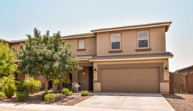 1441 W Hoptree Avenue, Queen Creek, AZ 85140 (MLS #6124269) :: Power Realty Group Model Home Center