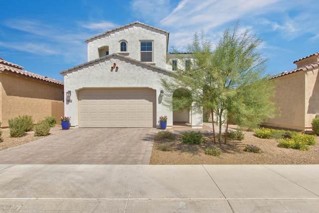 3280 E Louise Drive, Phoenix, AZ 85050 (MLS #6124485) :: Kepple Real Estate Group