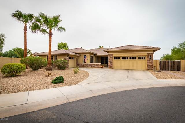 4362 N 158TH Drive, Goodyear, AZ 85395 (MLS #6124533) :: Conway Real Estate