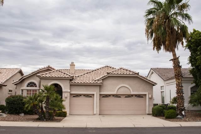 21420 N 56TH Avenue, Glendale, AZ 85308 (MLS #6124604) :: RE/MAX Desert Showcase