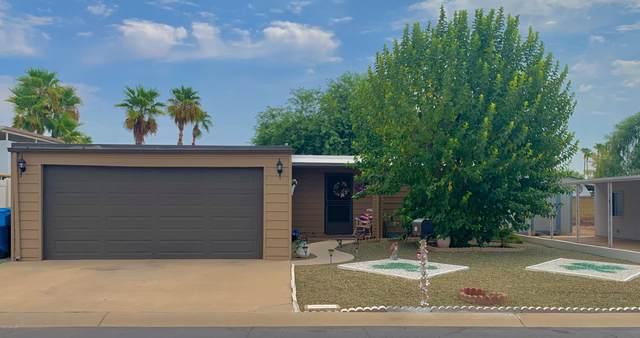 16239 N 32ND Place, Phoenix, AZ 85032 (MLS #6124676) :: Walters Realty Group