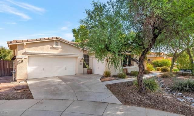 3244 E Cardinal Court, Chandler, AZ 85286 (MLS #6125129) :: Long Realty West Valley