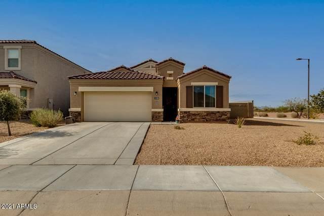 3138 N 303RD Drive, Buckeye, AZ 85396 (MLS #6125166) :: Homehelper Consultants