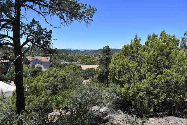 1107 S Sequoia Circle, Payson, AZ 85541 (MLS #6125345) :: Lucido Agency