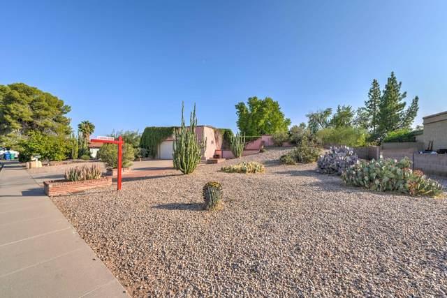 2025 E Downing Street, Mesa, AZ 85213 (MLS #6125459) :: The Ellens Team