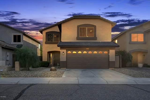 2239 E Parkside Lane, Phoenix, AZ 85024 (MLS #6125629) :: Lucido Agency