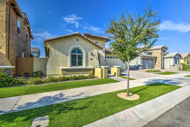 3700 E Ebano Street, Gilbert, AZ 85295 (MLS #6125745) :: neXGen Real Estate