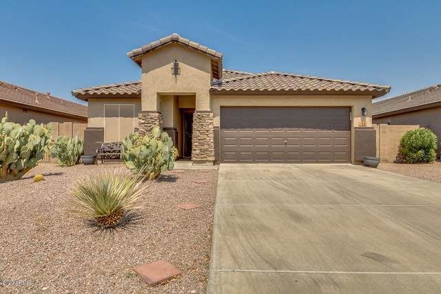 35550 N Belgian Blue Court, San Tan Valley, AZ 85143 (#6125763) :: The Josh Berkley Team