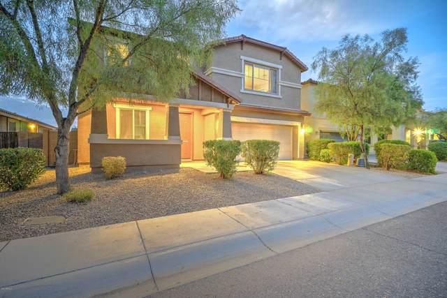 3444 W Saint Kateri Drive, Phoenix, AZ 85041 (MLS #6125809) :: Conway Real Estate