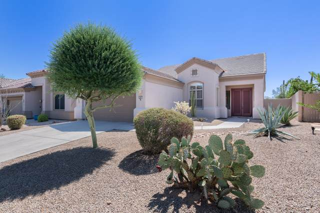 15733 E Cactus Drive, Fountain Hills, AZ 85268 (MLS #6125851) :: Long Realty West Valley