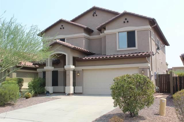 42419 N 45TH Drive, Phoenix, AZ 85086 (MLS #6125964) :: The C4 Group